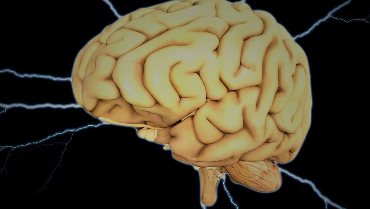 Train Your Brain for a Healthy Lifestyle