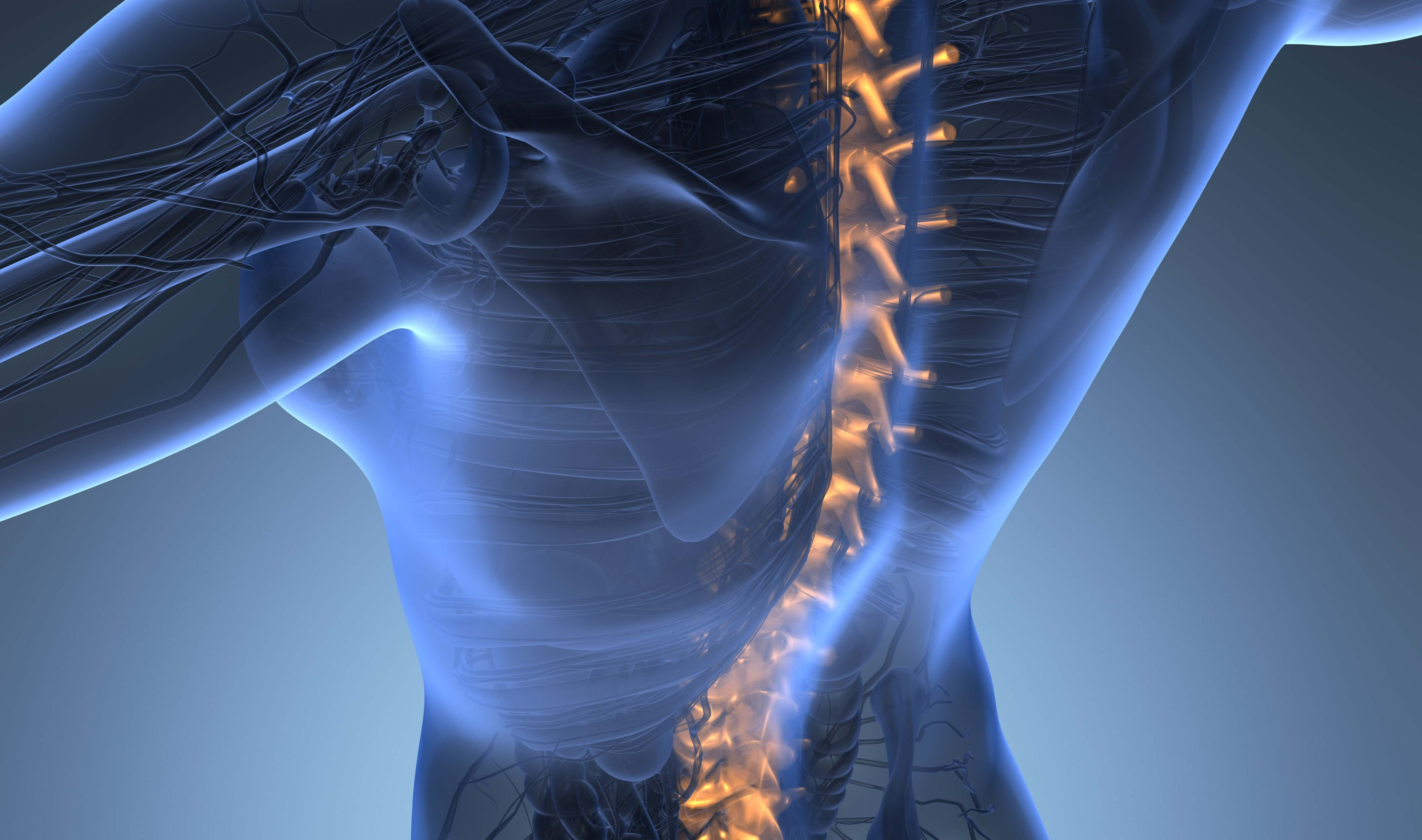 Scoliosis Treatment in Austin